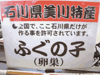 任孫トップ5